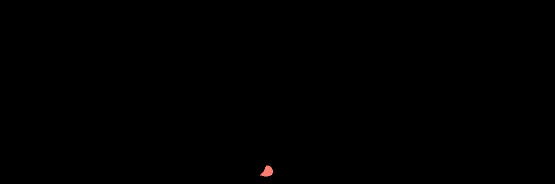 naissance-renard